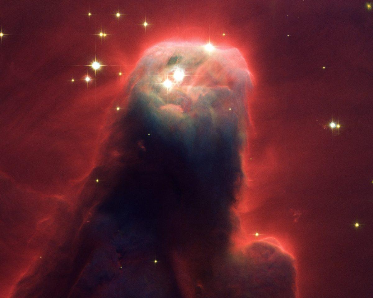 astrobiologia 23