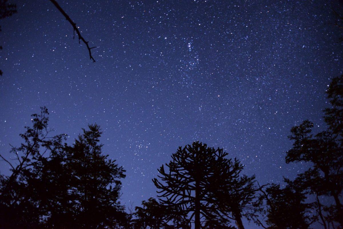 constelaciones13