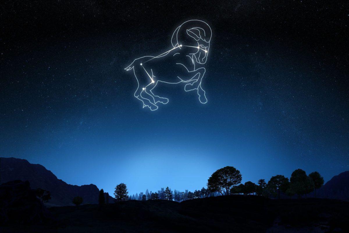 constelaciones14