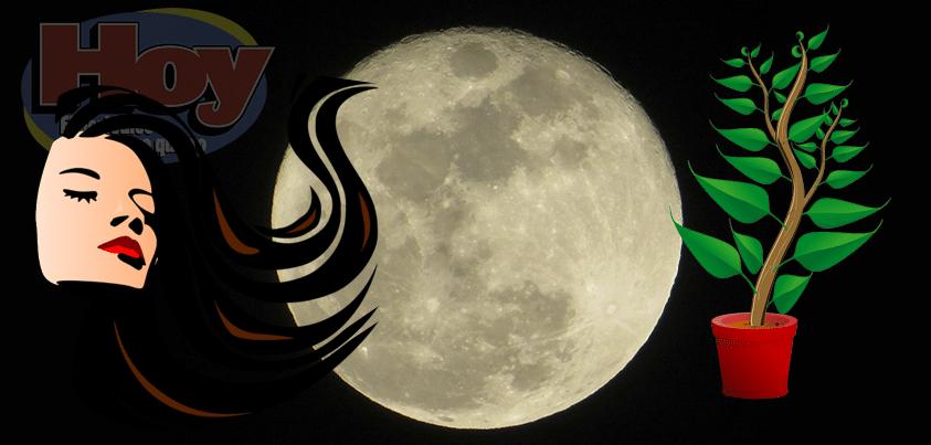 fases-etapas-o-estaciones-de-la-luna 29