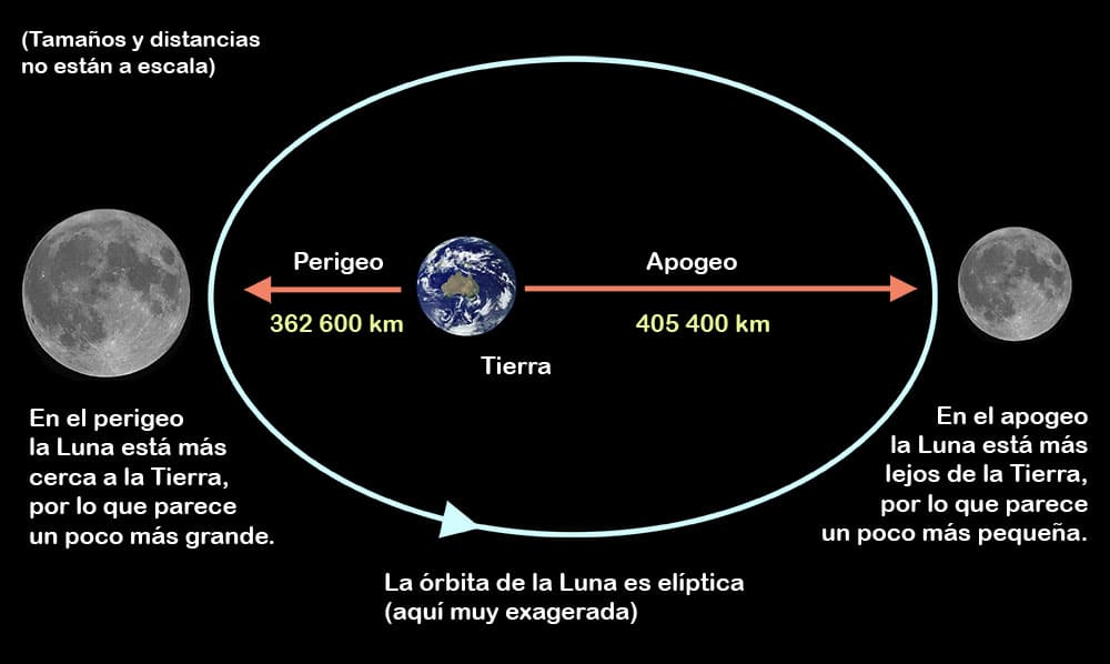 la luna-9