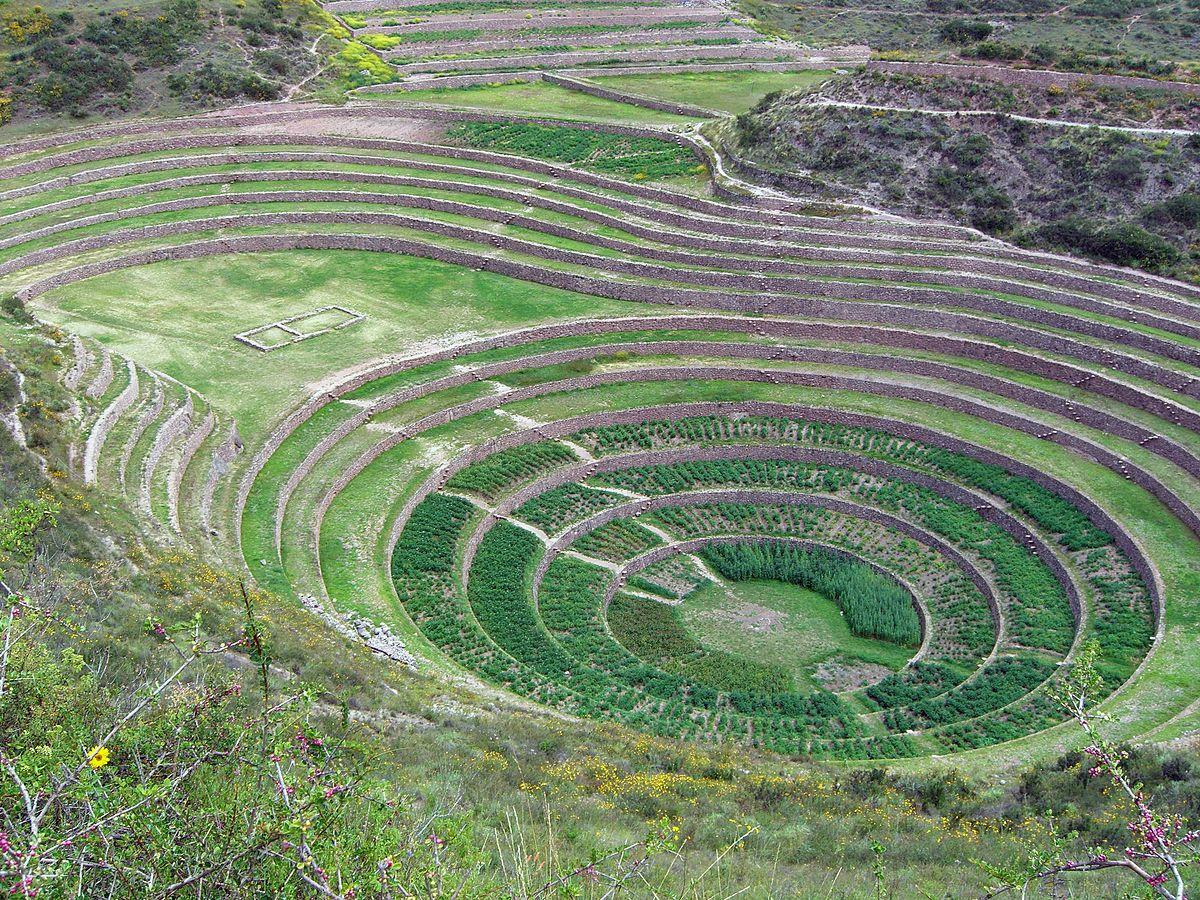 cultivos de incas