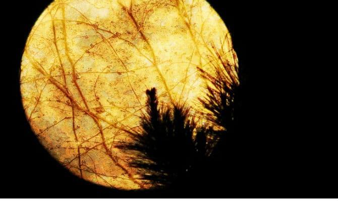 solsticio-de-verano28