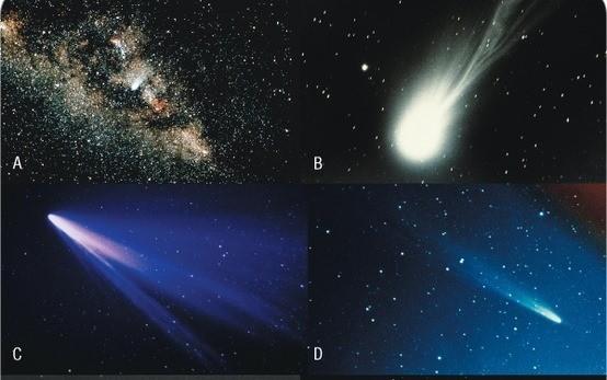 fotografía de asteroide 628