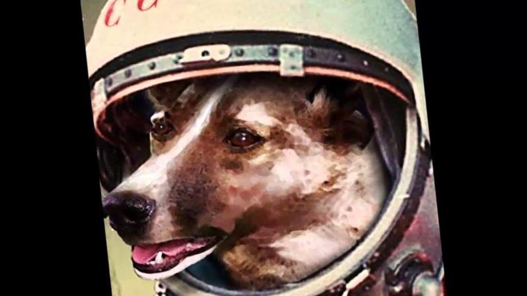 cosmonauta-16jpg
