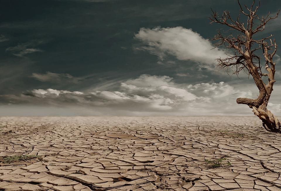 clima y mas