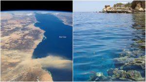 Mar Rojo: Historia, Ubicación, Características y Mucho Más