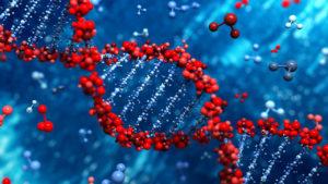 Biomoléculas: ¿Qué son?, Características, Tipos, Función, Importancia