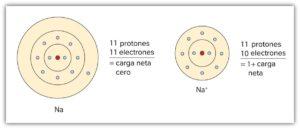 Átomo: Historia, ¿Qué es?, Tipos, Tamaño, Estructura y Partes