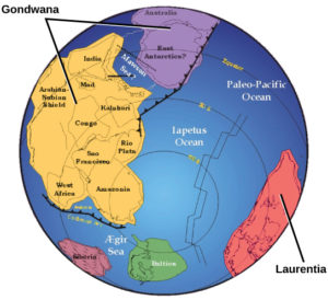 Neoproterozoico, Todo lo que no sabes de este Período Geológico
