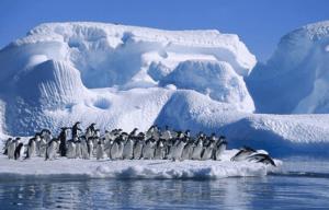 Polo Sur: Ubicación, Temperatura, Clima y Mucho Más