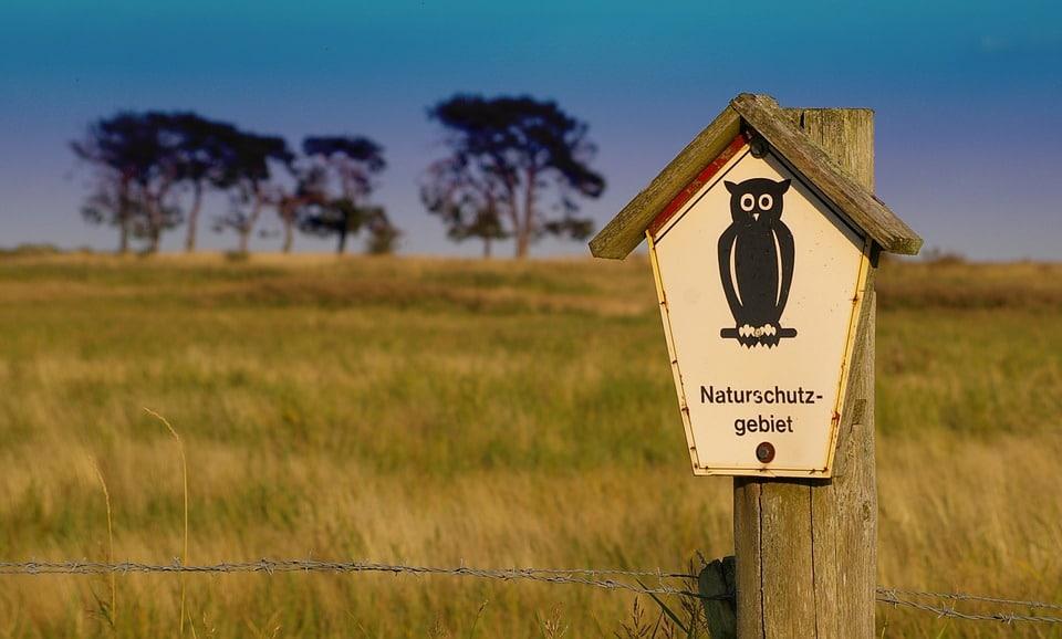 áreas naturales protegidas y mas