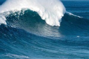 Viento: ¿Qué es?, Velocidad, Fuerza, Energía y mucho más